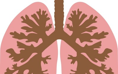 Importance of Respiratory Rate